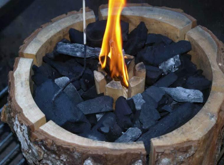 Bio lesni žar: Ognjišče z ogljem
